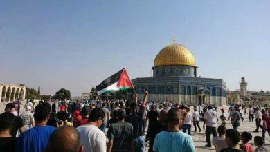 صورة الأكاديمي خيري عمر يجيب عن أسئلة M5 حول الوساطة المصرية بين إسرائيل و فلسطين