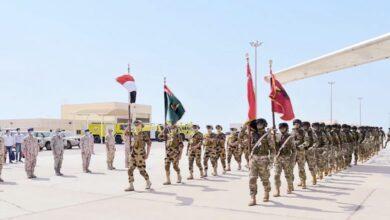 صورة شاهد : أبرز التطورات الأمنية في البلدان العربية